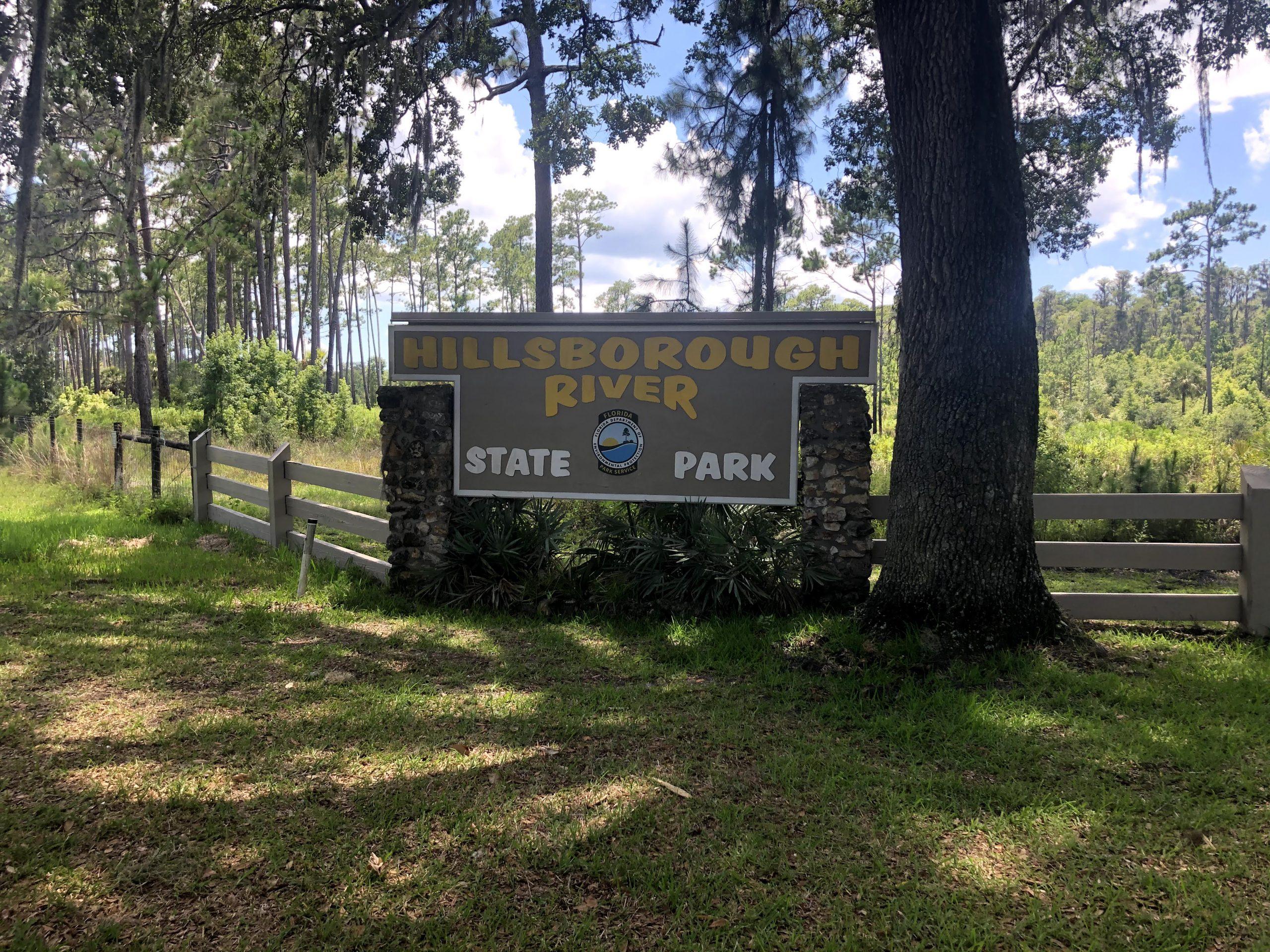 Alligator Chase Part Two: Hillsborough River State Park
