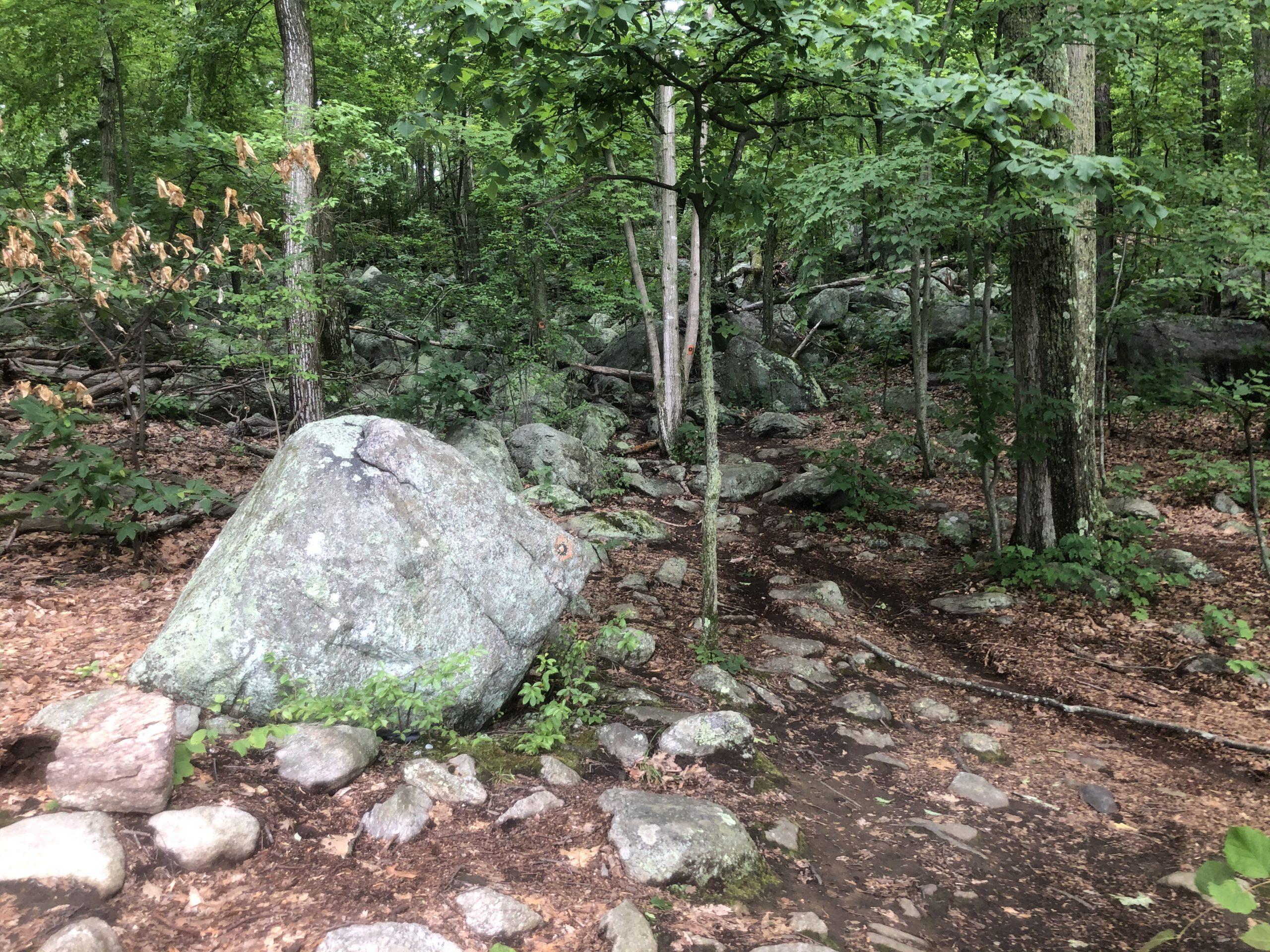 Bear Mountain Reservation – Danbury, CT