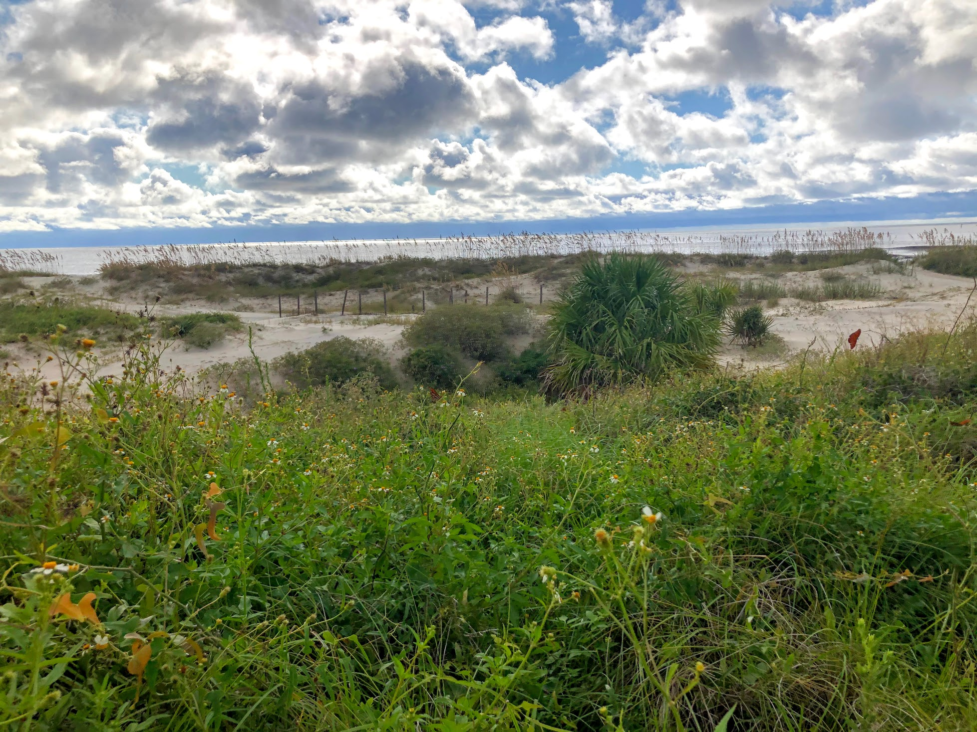 How to Spend a Day on Jekyll Island, GA