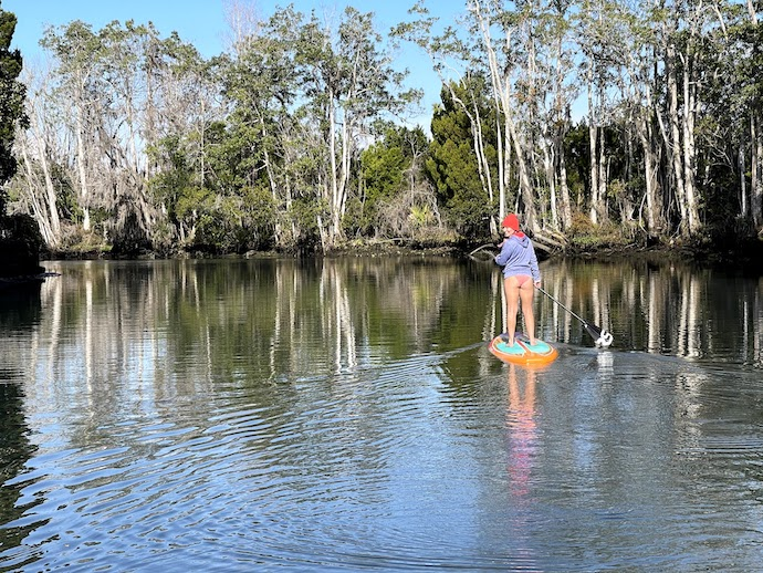 Paddle boarding on Crystal River