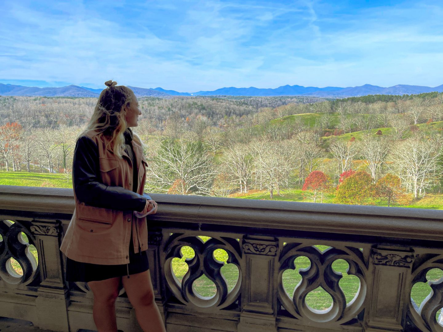 Blue Ridge Mountains from the Biltmore House
