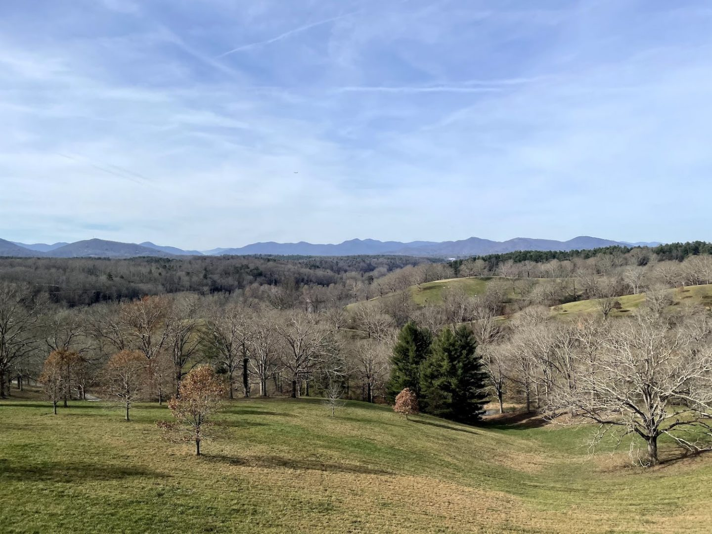 View from Biltmore Estate