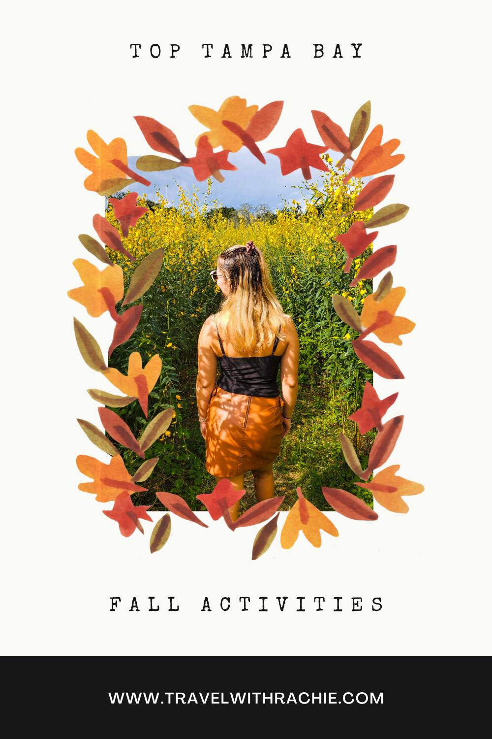 Fall Activities in the Tampa Bay Pinterest Pin